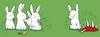 A Canni-bunny
