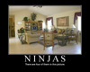 Can you find the Ninjas?