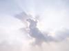 Clouded Eagle