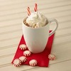 Peppermint Hot Cocoa Anyone?