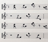 Motion to the music ♫