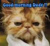 Good Morning ..