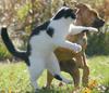 Behave! Or Get Slapped!!