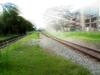 Dreamy Railway track