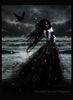 A Dark Fairy