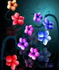 Flowers Of ★Light★
