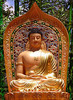 Buddha be with u!