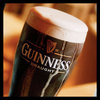 A Pint of Guiness