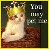 Pet me Plz!