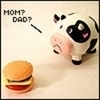 cow mooo~
