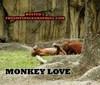 lets make monkey luv ;)