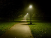 Walk in the park at night ♥
