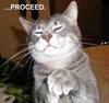 Sinister Feline Plans....
