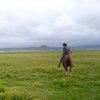 a horseback riding adventure